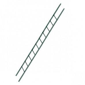 Лестница фасадная BORGE секция 3000 мм RAL 6005 (зеленый мох)