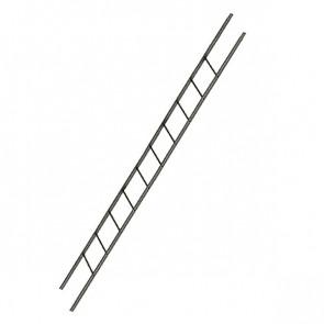 Лестница фасадная BORGE секция 3000 мм RR 32 (темно-коричневый)