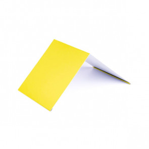 Конек узкий (100*100), 1,25 м, полиэстер RAL 1018 (цинково-желтый)